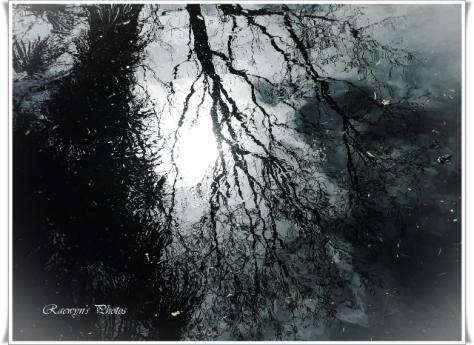 Gothic Photoscape (640x466)