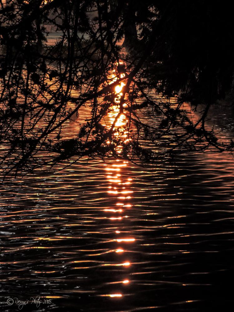 Sunrise 08.06.2015-273